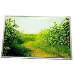 Display Laptop Hannstar 10.1 LED HSD101PFW1-A01